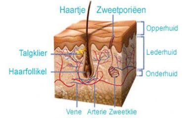Huidbehandeling Skin Treatement Voor een prachtige egale huid - Brussels Belgium DR Dombard